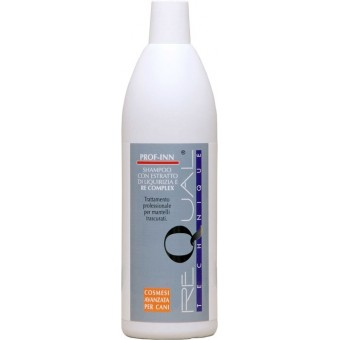 C002 ReQual Technique Prof-Inn Shampoo 1000 ml